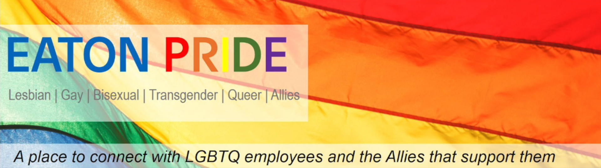 Eaton LGBTQ+ and allies inclusion resource group celebrate PRIDE