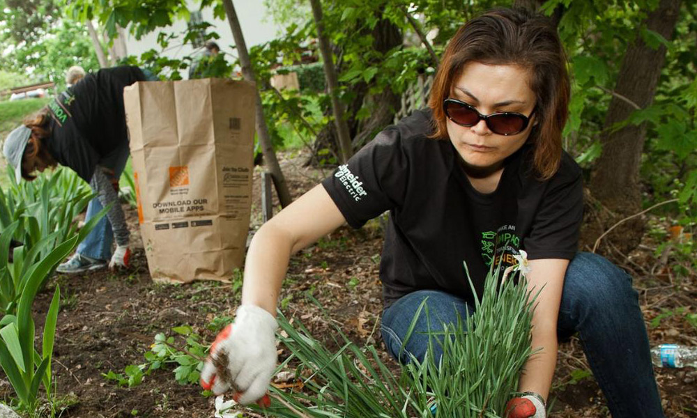 Schneider Electric employees volunteer to support community