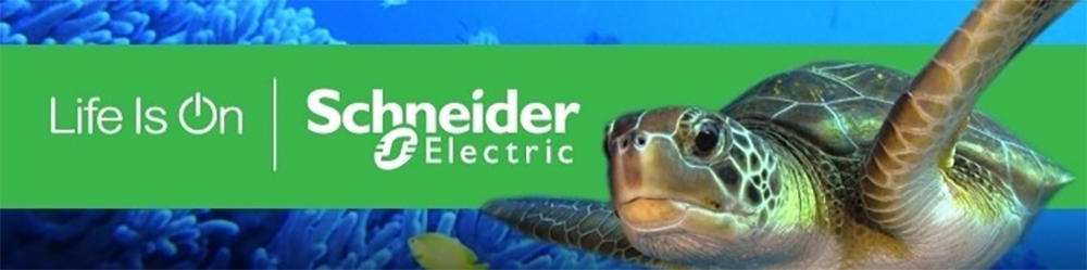 Financial services to Schneider Electric engineer: Sallys journey